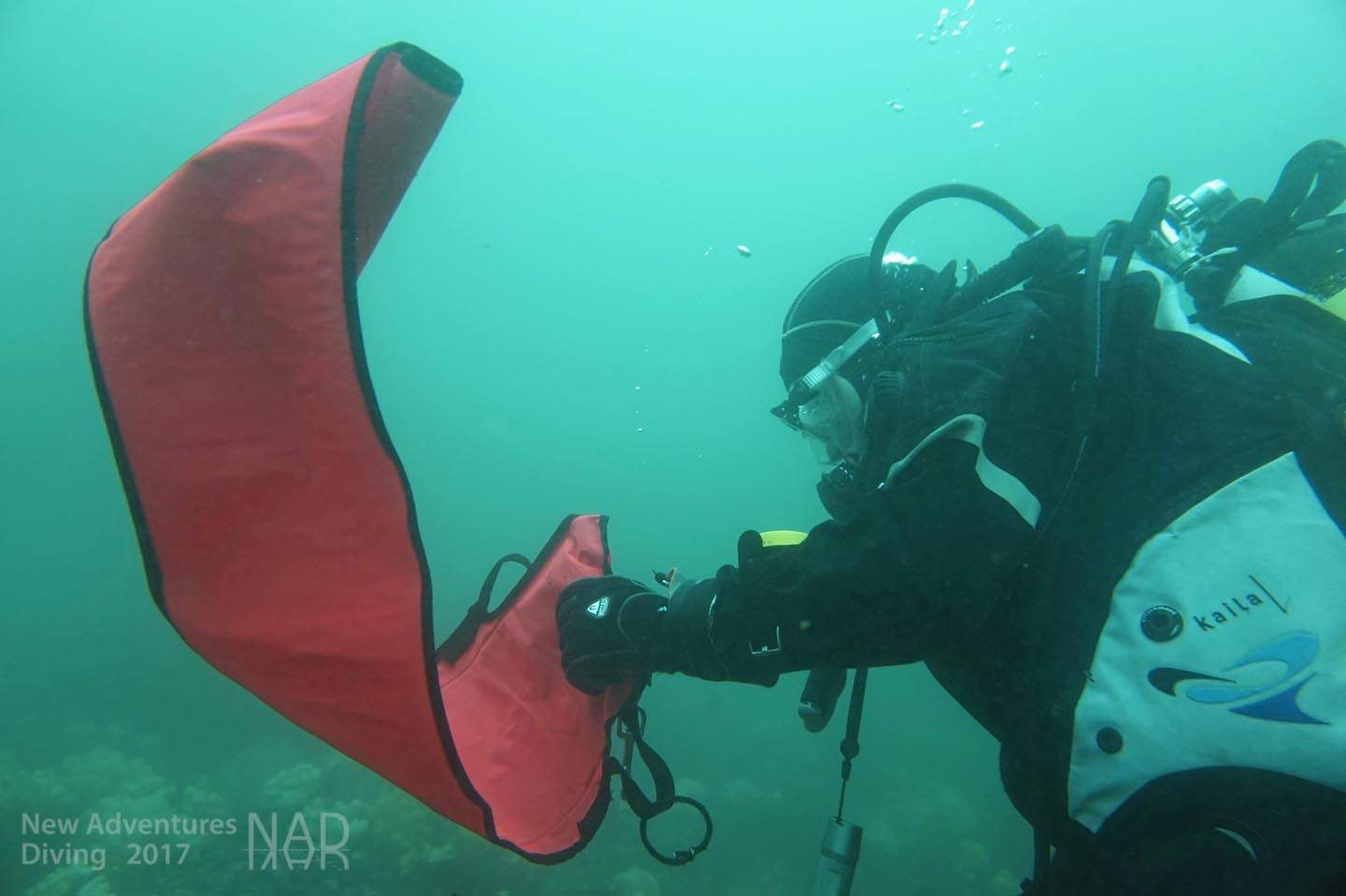 Advanced Open Water Aow Training In The North West With New